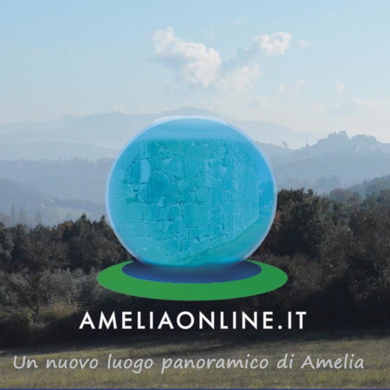 Ameliaonline.it è un progetto nato nel 2009 da un idea di Masisoft